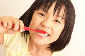 虫歯になりやすく、進行しやすい乳歯・生え始めの永久歯